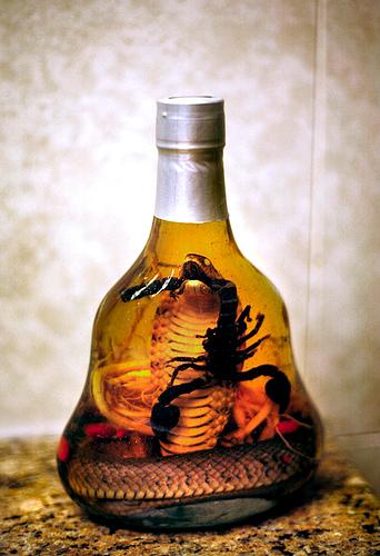 Haďo-štíří vínko
