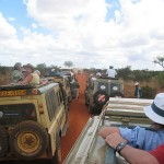 Safari v Africe - turismus
